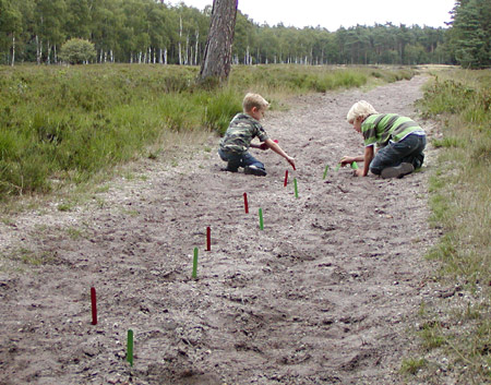 Tracking markers