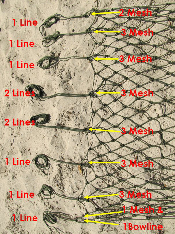 Figure 8 - Lines & Mesh