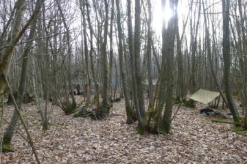 Shelters on the Woodlore Introduction to Bushcraft course