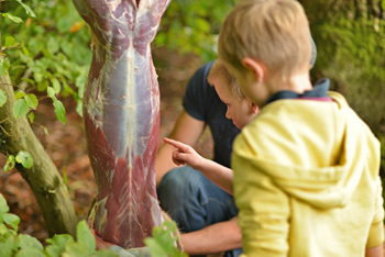 Some of the children helping to prepare the deer for cooking