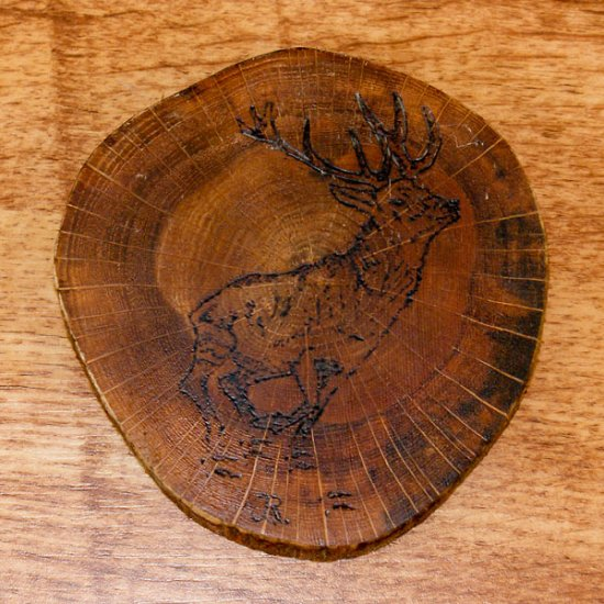 Ross Burt - Deer Coaster 3