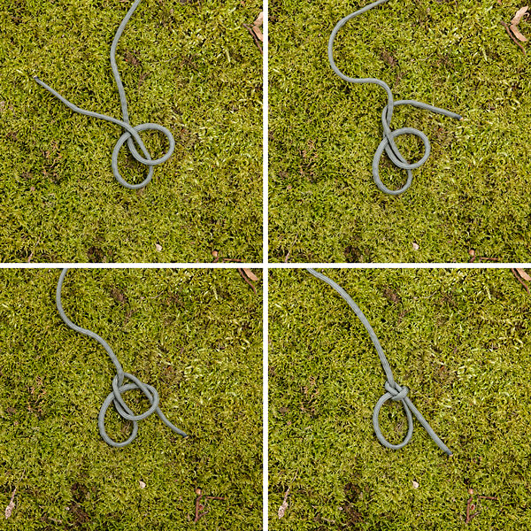 Bowline knot guide