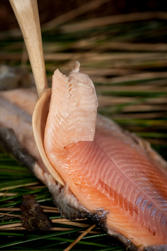 How to Cook Outdoors: Moss-Steamed Trout