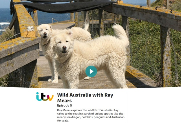Wild Australia with Ray Mears Episode 5