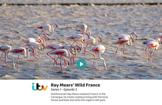 Wild France with Ray Mears - Episode 3