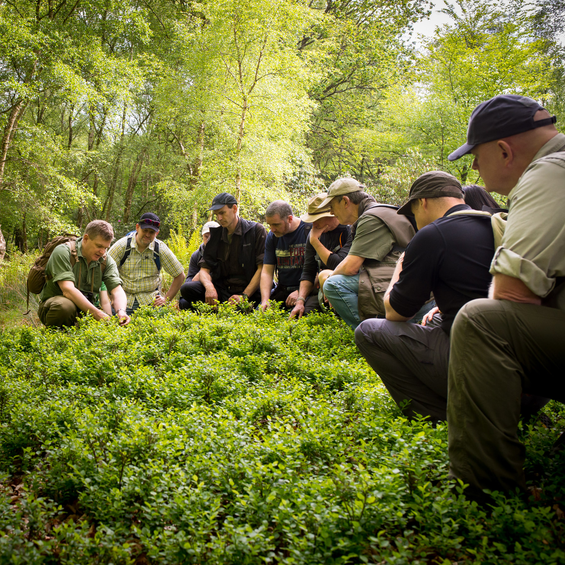 A Walk in the Woods with Ray Mears