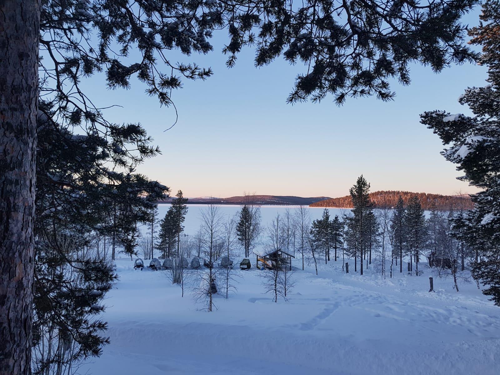 Winter Bushcraft in the Northern Forest